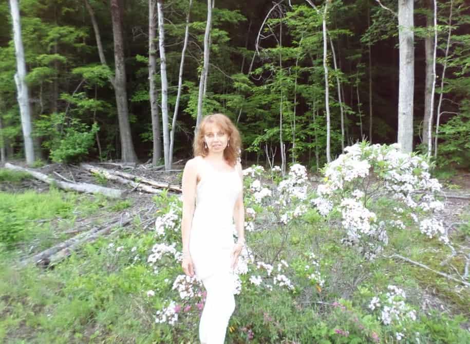 Meža taka netālu no Brattleboro. Vasaras Saulgriežu laiks.